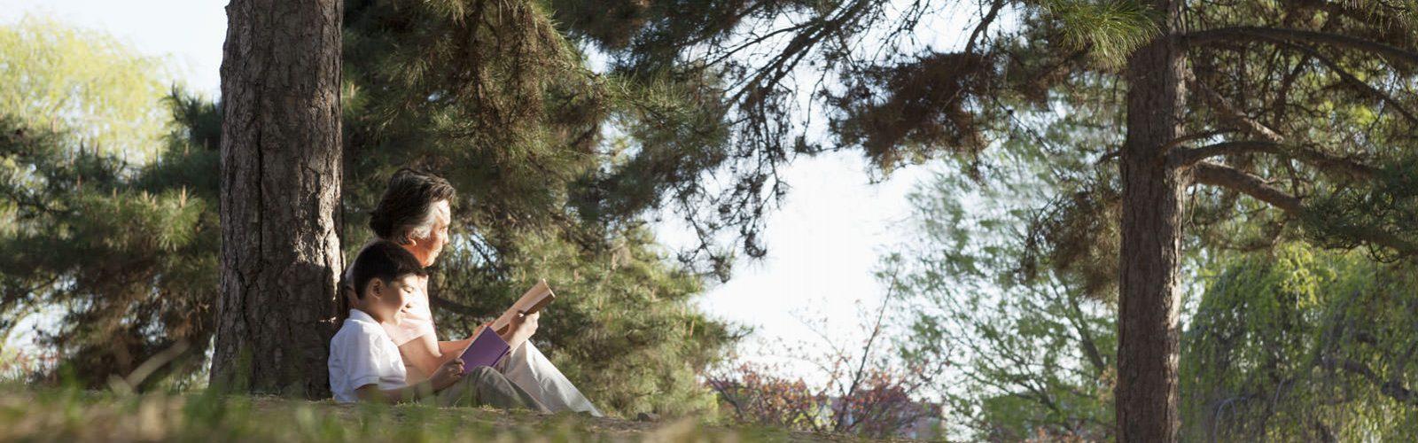 Mann mittleren Alters sitzt neben einem Jungen unter einem Baum, beide lesen ein Buch.